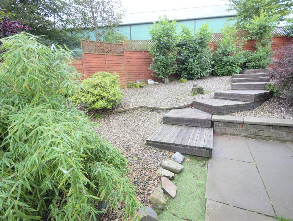 Back Garden (b)